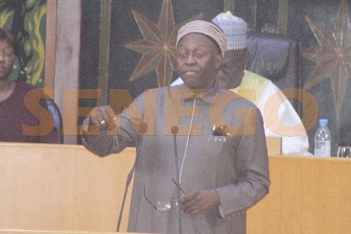 Mamadou Lamine Diallo (2)