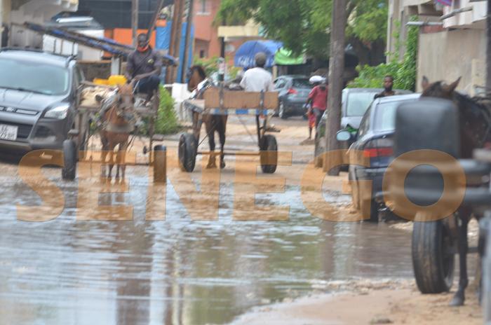Pluie-inondation (20)