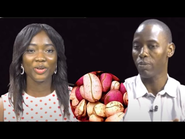 Video thumbnail for youtube video pifgqryo_sa
