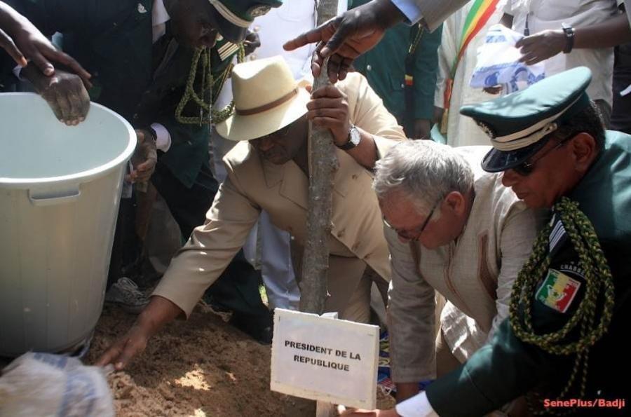 Journée de la terre : Macky Sall plante des arbres, cet après-midi au Palais
