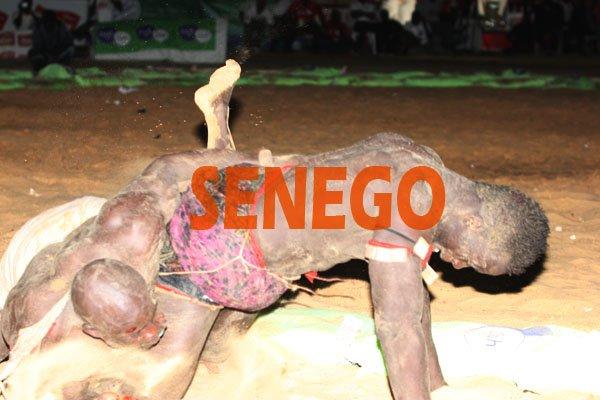 (Photos) – LUTTE: Siteu corrige et bat Zarko ce vendredi à Demba Diop. Regardez