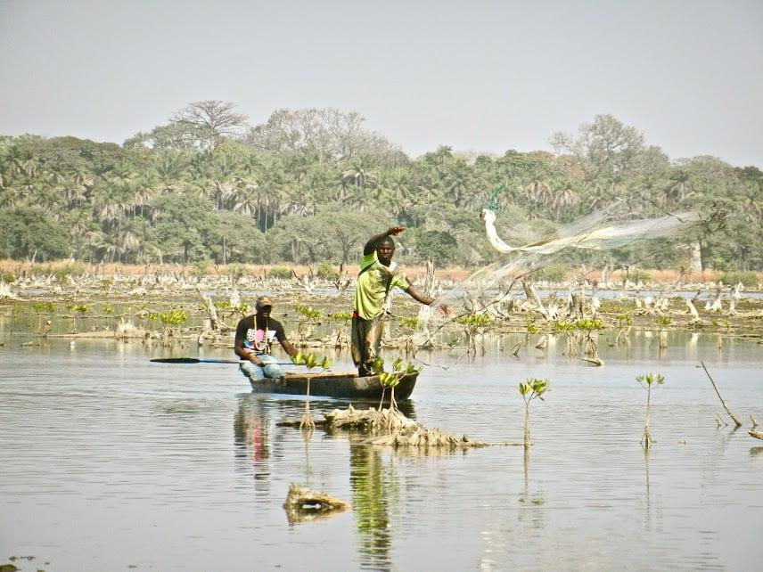 Casamance, dizaine d'entreprises, financement, mise à niveau