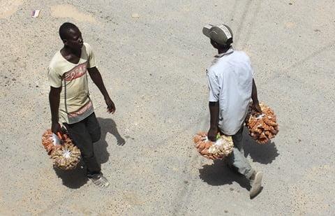 (6) Photos : Ces petits métiers qui ne tentent pas les jeunes dakarois