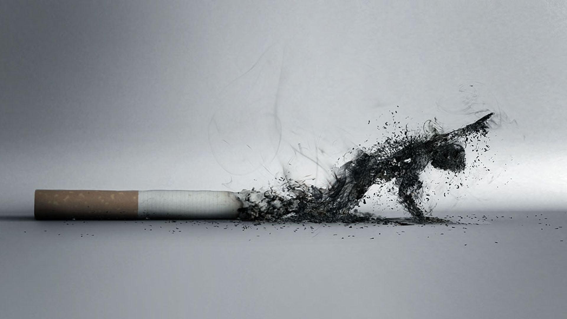Au Sénégal, 11,6 % des garçons et 7,2 % des filles, entre 13 et 15 ans fument le tabac