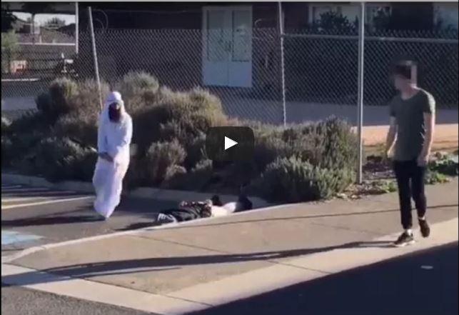 Vidéo: Insolite – Qui l'aurait affronté?