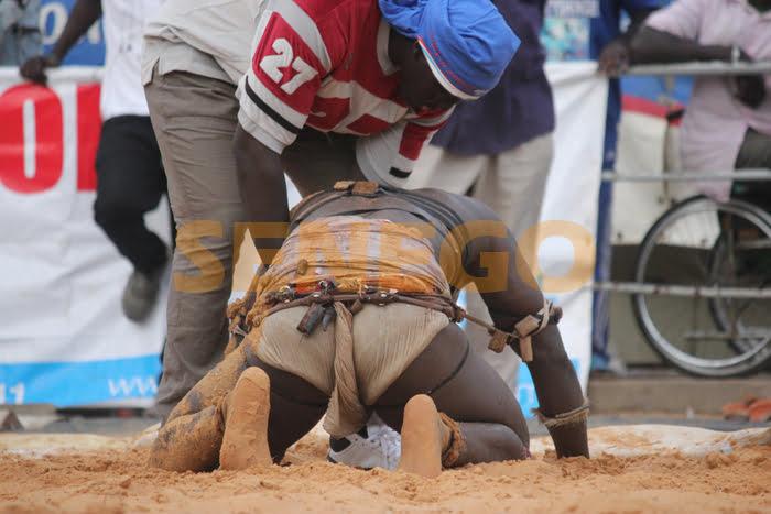 (32) Photos: La chute de Boye Djiné face à Clé Mansour