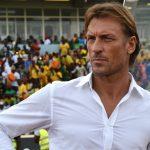 afrique, Can 2019, Coupe d'Afrique des Nations, Egypte, Football, Hervé Renard, Sénégal, Sports