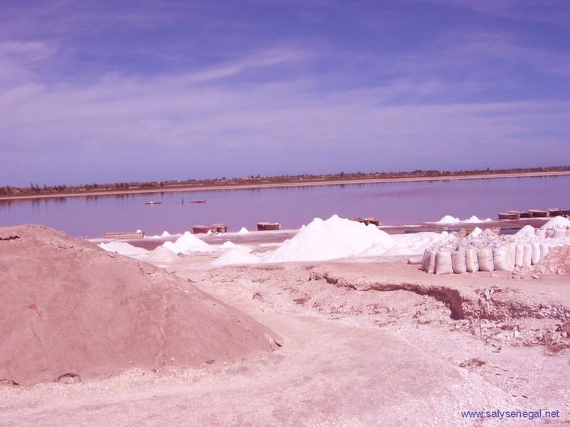 Greenpeace Asie de l'Est, les Sénégalais consomment tous les jours, présente dans le sel, Une forte dose de plastique