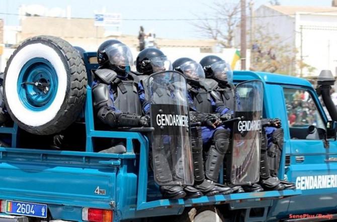 6 007 délits, 8 143 personnes arrêtées : la gendarmerie sort les chiffres de la criminalité