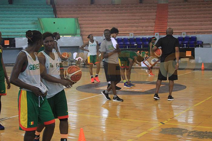 Lionnes-basket (5)