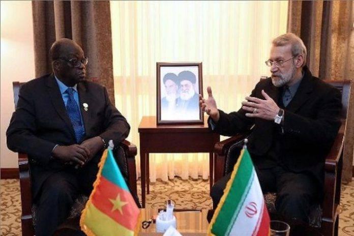 Moustapha Niasse reçu avec le drapeau du Cameroun — Visite en Iran