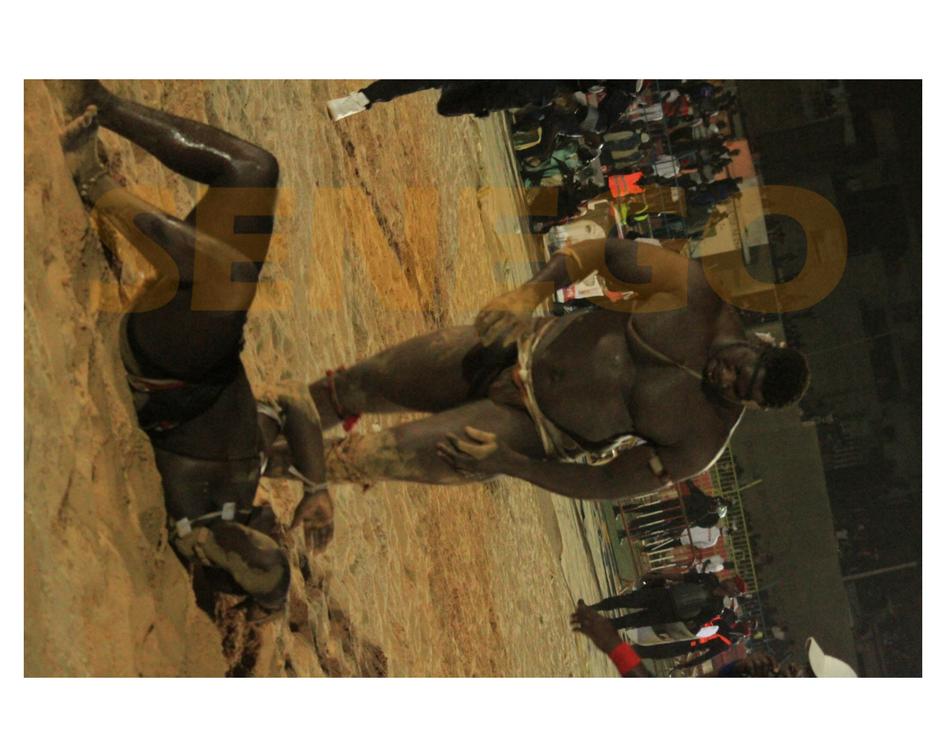 combats, défi, Lutte, Tapha Tine