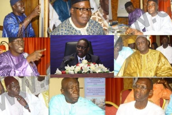 communicateurs traditionnels, Gaz, Macky Sall, Pétrole