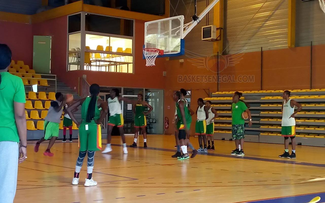 basket féminin, basket sénégal, Cheikh Sarr, coupe du monde de basket, équipe nationale, lionnes du sénégal, Mondial 2018, Sénégal