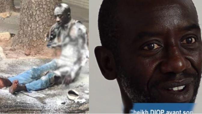 cheikh diop, La famille porte plaine