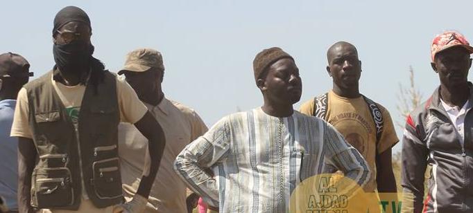 Abdoul Aziz Sy AL Amine, Boulél, Récolte, Serigne Moustapaha SY