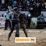 Lutte, SENEGO Sport, senego tv