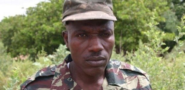 Mfdc, Ousmane Sonko