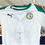 Can 2019, Maillot, Sénégal