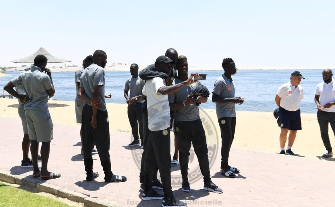 Arrêt sur images: La promenade des lions - Un groupe de personnes debout sur une plage - Tourisme