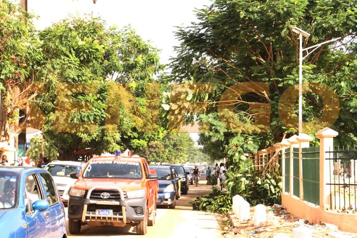 arbre arache pluie 1 - (20 photos) -Tornade à Dakar : Arbres déracinés, toits envolés...
