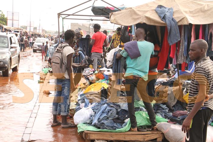 marche colobane pluie arbre arache 1 - (20 photos) -Tornade à Dakar : Arbres déracinés, toits envolés...