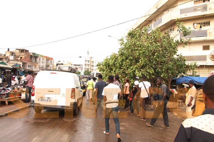 marche colobane pluie arbre arache 5 - (20 photos) -Tornade à Dakar : Arbres déracinés, toits envolés...