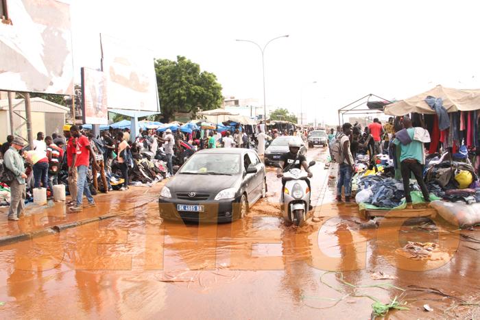 marche colobane pluie arbre arache 6 - (20 photos) -Tornade à Dakar : Arbres déracinés, toits envolés...