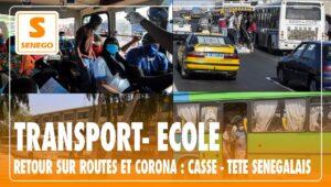 transport, corona