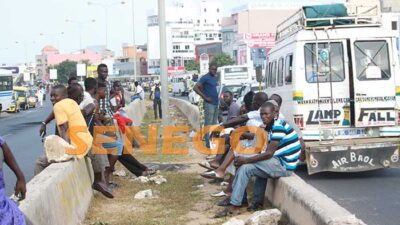 transport-greve-usagers-11